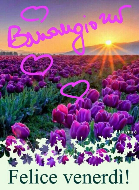 Link di buon venerdì in primavera (3)